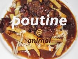 Food type – poutine @ animal